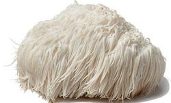 lions mane mushroom used in rise and grind elixirs